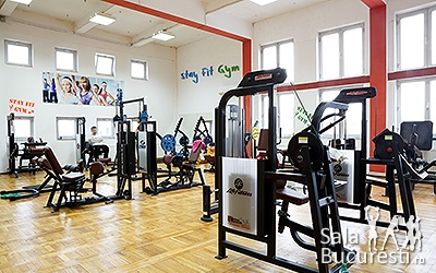 Stay Fit Gym Teiul Doamnei