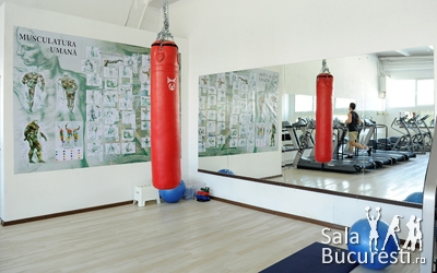 Fit Factory Sport GYM (FFS GYM)